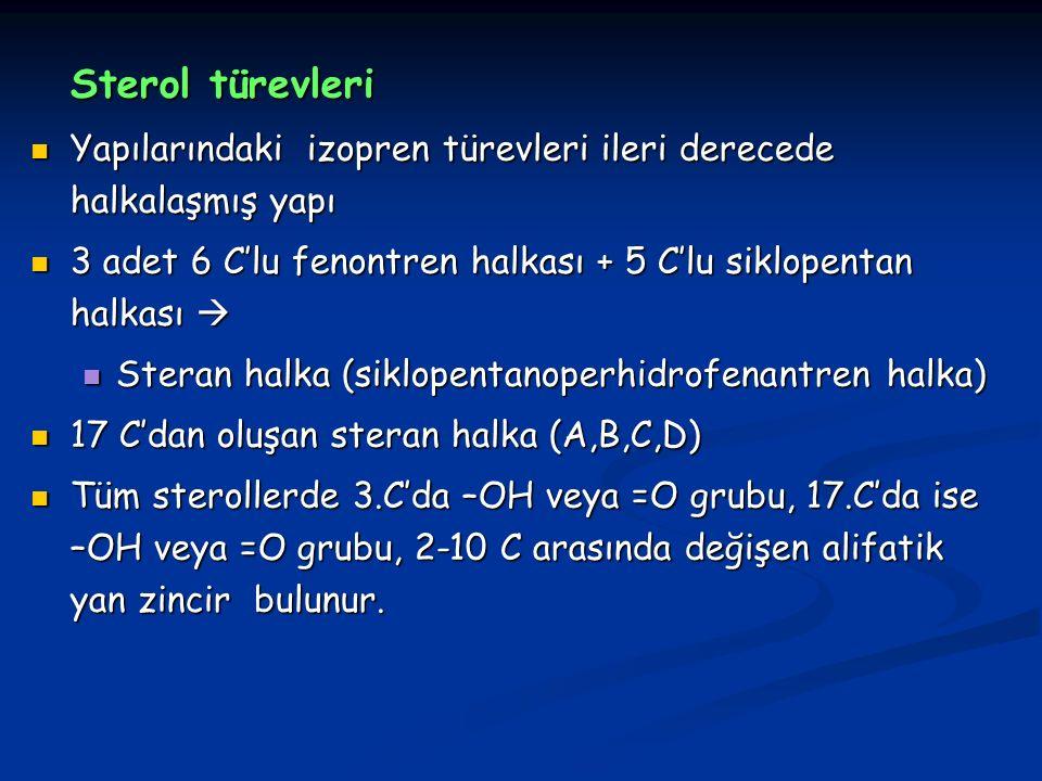 Sterol türevleri Yapılarındaki izopren türevleri ileri derecede halkalaşmış yapı Yapılarındaki izopren türevleri ileri derecede halkalaşmış yapı 3 adet 6 C'lu fenontren halkası + 5 C'lu siklopentan halkası  3 adet 6 C'lu fenontren halkası + 5 C'lu siklopentan halkası  Steran halka (siklopentanoperhidrofenantren halka) Steran halka (siklopentanoperhidrofenantren halka) 17 C'dan oluşan steran halka (A,B,C,D) 17 C'dan oluşan steran halka (A,B,C,D) Tüm sterollerde 3.C'da –OH veya =O grubu, 17.C'da ise –OH veya =O grubu, 2-10 C arasında değişen alifatik yan zincir bulunur.