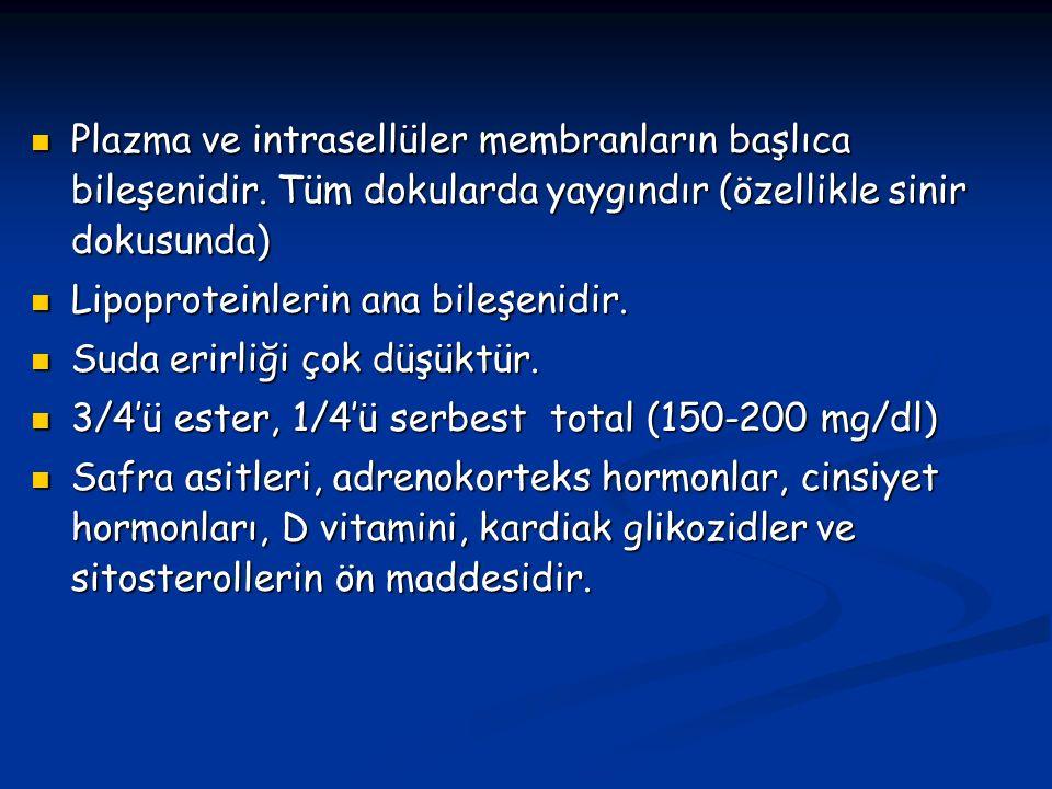 Plazma ve intrasellüler membranların başlıca bileşenidir.
