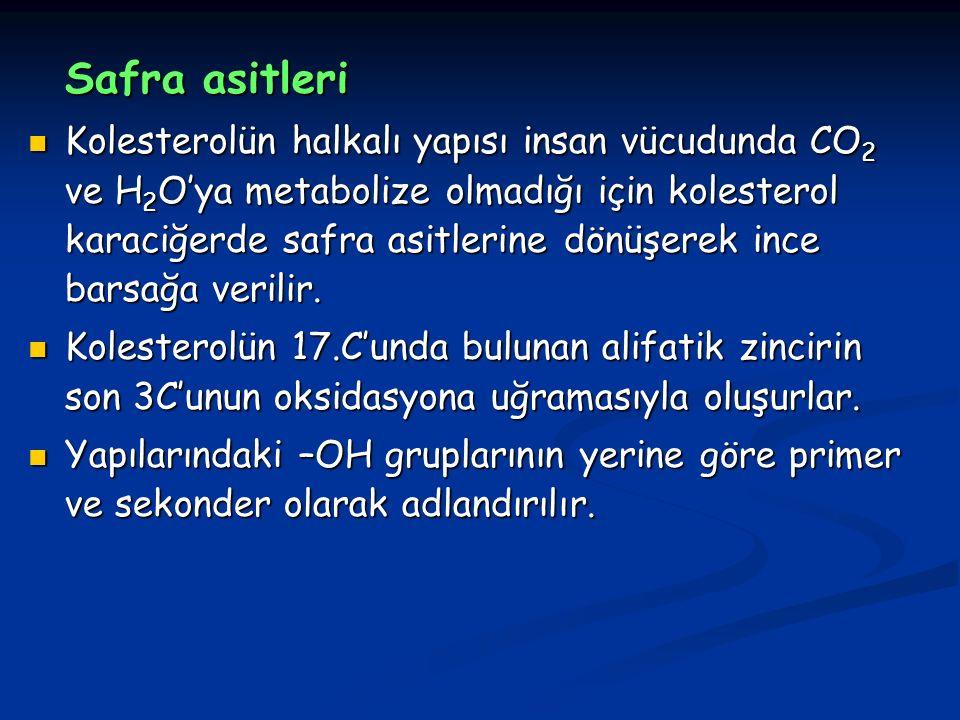 Safra asitleri Kolesterolün halkalı yapısı insan vücudunda CO 2 ve H 2 O'ya metabolize olmadığı için kolesterol karaciğerde safra asitlerine dönüşerek ince barsağa verilir.