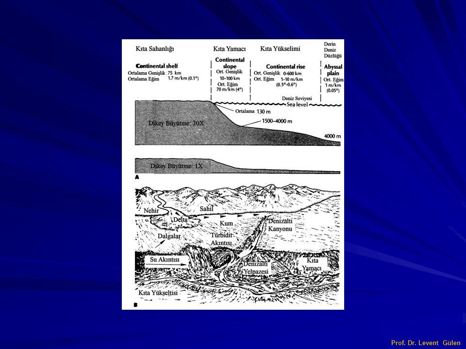Litostratigrafi Litostratigrafinin konusu kayaç litolojisi veya tabakaların fiziksel karakteri olup, kayaç birimlerinin düzeni sadece litolojik özelliklerine göre belirlenir.