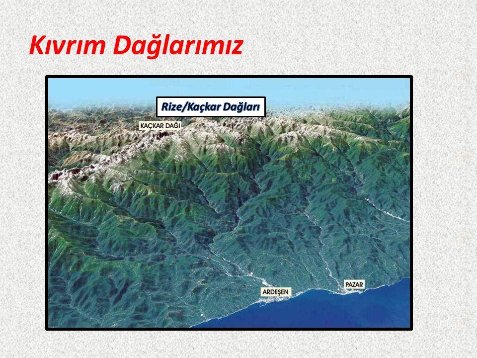 Doğu Anadolu'da Ağrı DağıBingöl D.Sat D. (Hakkari) Mescit D.(Erzurum) Süphan D.