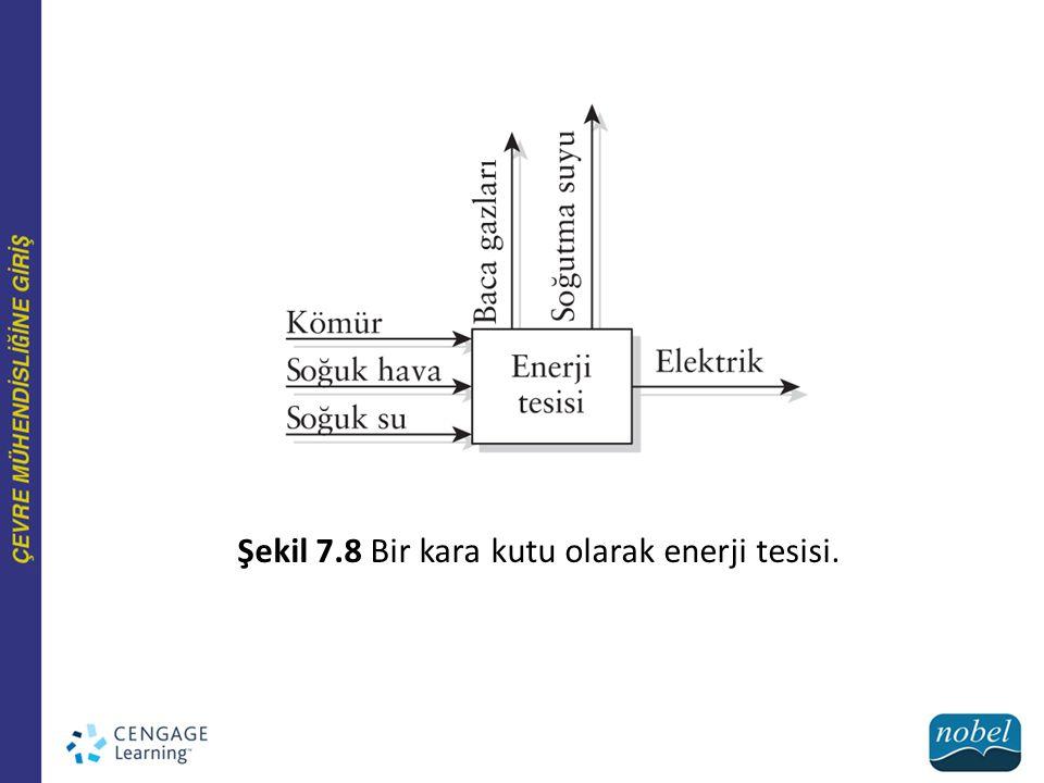 Şekil 7.8 Bir kara kutu olarak enerji tesisi.