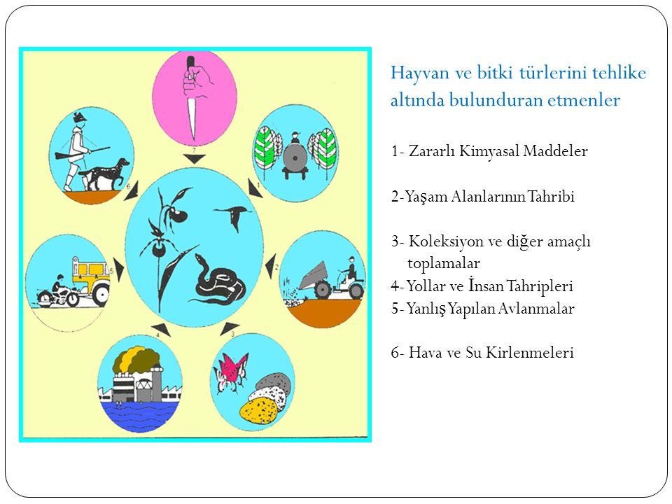 Hayvan ve bitki türlerini tehlike altında bulunduran etmenler 1- Zararlı Kimyasal Maddeler 2-Ya ş am Alanlarının Tahribi 3- Koleksiyon ve di ğ er amaç