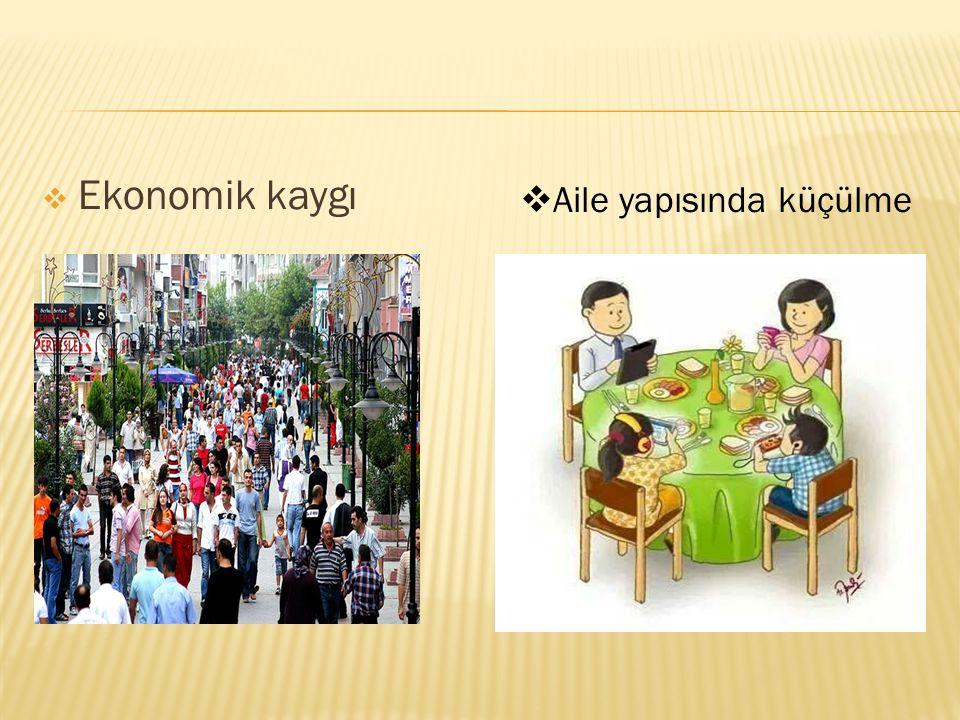  Ekonomik kaygı  Aile yapısında küçülme