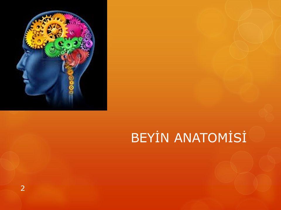 Ön Beyin (Frontal Bölge) Beynin Kaptan Köşkü Özdenetim öz yönetim Önemli ayrıntıyı fark edebilme Karar verme, odaklanma, muhakeme Soyut düşünce Planlama Stratejik düşünce Zihinsel iz sürme Sebat etme 3