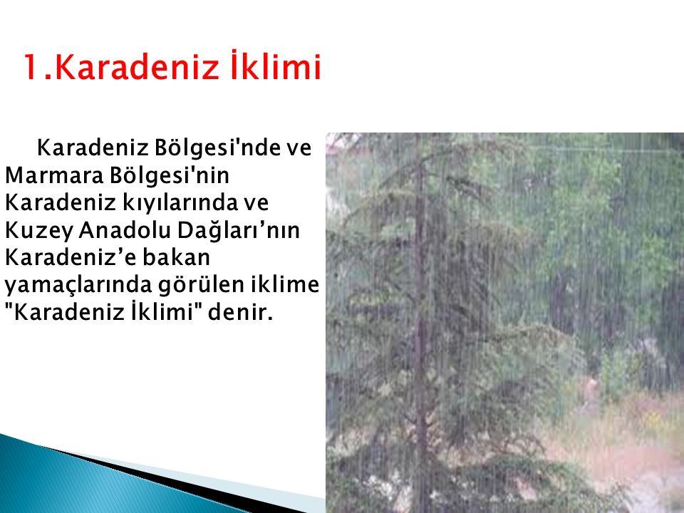 Karadeniz Bölgesi nde ve Marmara Bölgesi nin Karadeniz kıyılarında ve Kuzey Anadolu Dağları'nın Karadeniz'e bakan yamaçlarında görülen iklime Karadeniz İklimi denir.