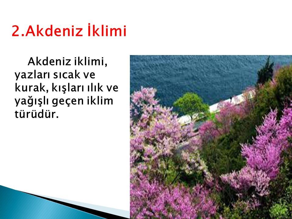 Akdeniz iklimi, yazları sıcak ve kurak, kışları ılık ve yağışlı geçen iklim türüdür. 2.Akdeniz İklimi