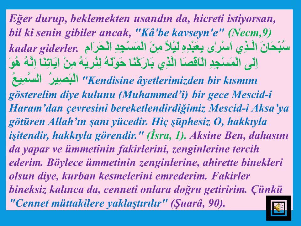ALLAH'A TESLİM OLANA O YETER 2- İncelik: Hz. Peygamber (s.a.v),