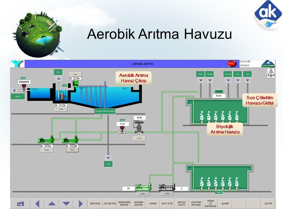 Aerobik Arıtma Havuz Çıkışı Biyolojik Arıtma Havuzu Son Çökeltim Havuzu Gidişi Aerobik Arıtma Havuzu