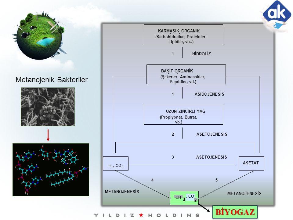 BİYOGAZBİYOGAZ Metanojenik Bakteriler H, CO 2 2