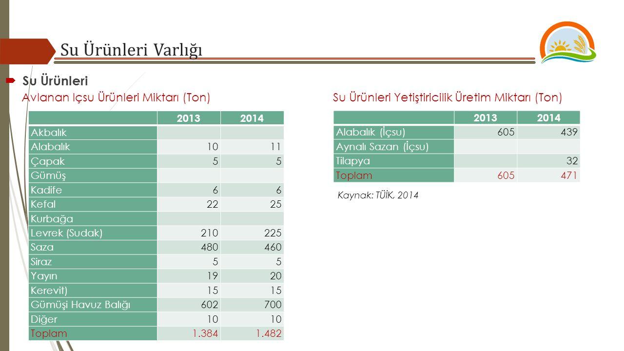 Su Ürünleri Varlığı Kaynak: TÜİK, 2014  Su Ürünleri Avlanan Içsu Ürünleri Miktarı (Ton) Su Ürünleri Yetiştiricilik Üretim Miktarı (Ton) 20132014 Akba