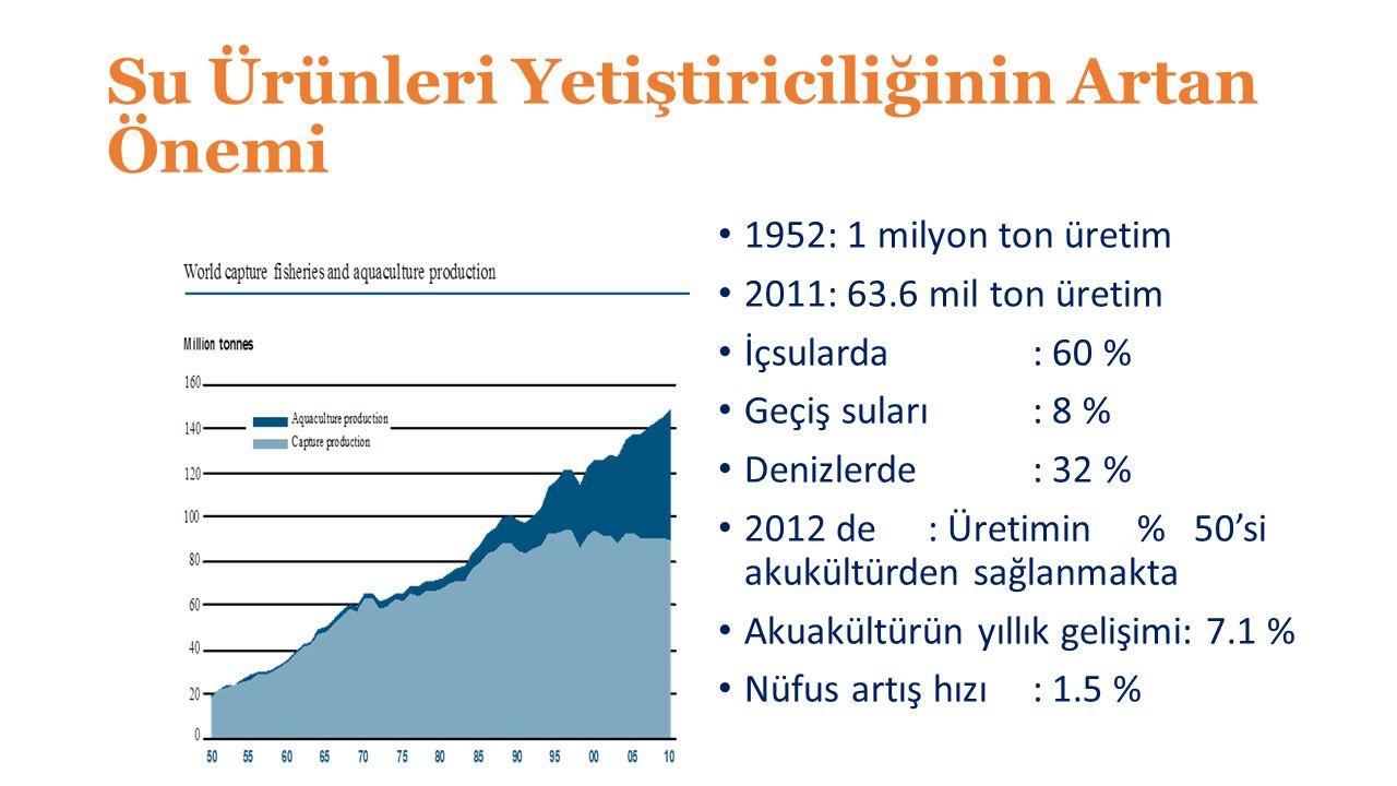 Su Ürünleri Yetiştiriciliğinin Artan Önemi 1952: 1 milyon ton üretim 2011: 63.6 mil ton üretim İçsularda: 60 % Geçiş suları: 8 % Denizlerde: 32 % 2012