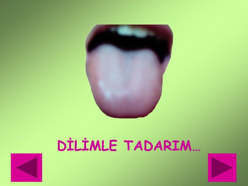 DİLİMLE TADARIM…