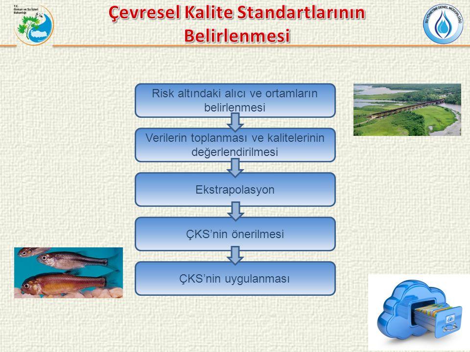 Risk altındaki alıcı ve ortamların belirlenmesi Verilerin toplanması ve kalitelerinin değerlendirilmesi Ekstrapolasyon ÇKS'nin önerilmesi ÇKS'nin uygu