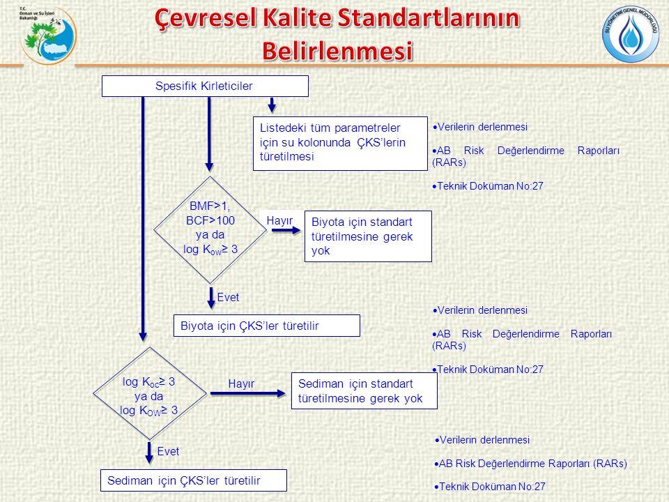 Spesifik Kirleticiler Listedeki tüm parametreler için su kolonunda ÇKS'lerin türetilmesi  Verilerin derlenmesi  AB Risk Değerlendirme Raporları (RAR