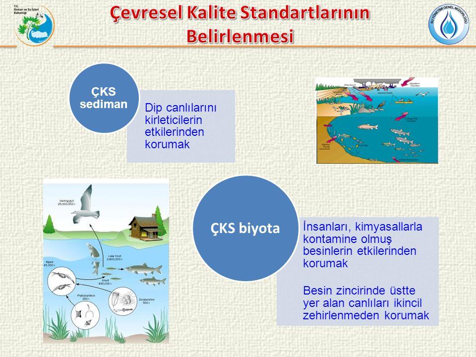Yüzeysel Su Kalitesi Yönetimi Yönetmeliği (RG: 28483, 30.11.2012) Amaç: Su kaynaklarının biyolojik, kimyasal, fiziko-kimyasal ve hidromorfolojik kalitelerinin belirlenmesi, sınıflandırılması, su kalitesinin ve miktarının izlenmesinin sağlanması, bu suların kullanım maksatlarının sürdürülebilir kalkınma hedefleriyle uyumlu bir şekilde koruma-kullanma dengesi de gözetilerek ortaya konulması, korunması ve iyi su durumuna ulaşılması için alınacak tedbirlere yönelik usul ve esasların belirlenmesi Kapsam: Yüzeysel sular ile kıyı ve geçiş suları Madde 10: Öncelikli kirleticiler ile spesifik kirleticiler için çevresel kalite standartlarının Bakanlıkça belirleneceği ifade edilmiştir.