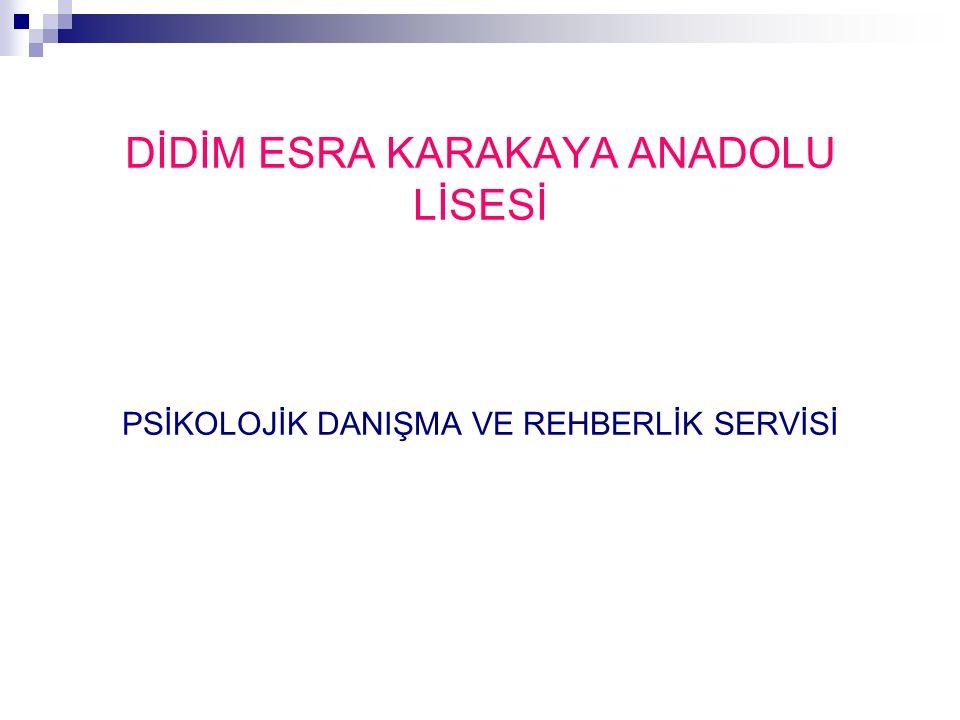 LYS DİL PUAN TÜRÜ Puan TürüTESTLERİN AĞIRLIKLARI % YGSLYS-5 TürkçeSosyal BilimlerTemel MatematikFen BilimleriDİL DİL-11596565 DİL-225137550 DİL-3482075