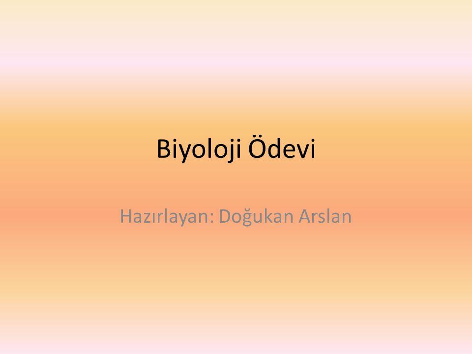 Biyoloji Ödevi Hazırlayan: Doğukan Arslan