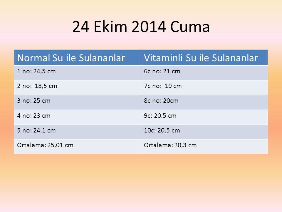 24 Ekim 2014 Cuma Normal Su ile SulananlarVitaminli Su ile Sulananlar 1 no: 24,5 cm6c no: 21 cm 2 no: 18,5 cm7c no: 19 cm 3 no: 25 cm8c no: 20cm 4 no: 23 cm9c: 20.5 cm 5 no: 24.1 cm10c: 20.5 cm Ortalama: 25,01 cmOrtalama: 20,3 cm