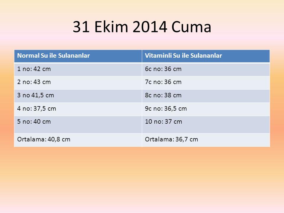 31 Ekim 2014 Cuma Normal Su ile SulananlarVitaminli Su ile Sulananlar 1 no: 42 cm6c no: 36 cm 2 no: 43 cm7c no: 36 cm 3 no 41,5 cm8c no: 38 cm 4 no: 37,5 cm9c no: 36,5 cm 5 no: 40 cm10 no: 37 cm Ortalama: 40,8 cmOrtalama: 36,7 cm
