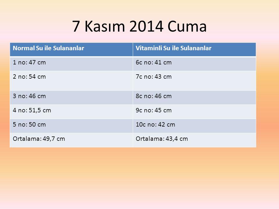 7 Kasım 2014 Cuma Normal Su ile SulananlarVitaminli Su ile Sulananlar 1 no: 47 cm6c no: 41 cm 2 no: 54 cm7c no: 43 cm 3 no: 46 cm8c no: 46 cm 4 no: 51