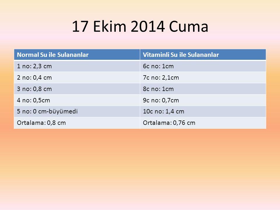 17 Ekim 2014 Cuma Normal Su ile SulananlarVitaminli Su ile Sulananlar 1 no: 2,3 cm6c no: 1cm 2 no: 0,4 cm7c no: 2,1cm 3 no: 0,8 cm8c no: 1cm 4 no: 0,5cm9c no: 0,7cm 5 no: 0 cm-büyümedi10c no: 1,4 cm Ortalama: 0,8 cmOrtalama: 0,76 cm