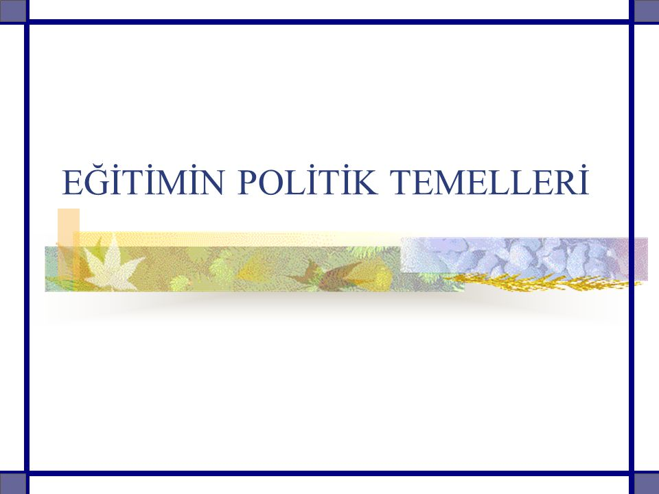 EĞİTİMİN POLİTİK TEMELLERİ