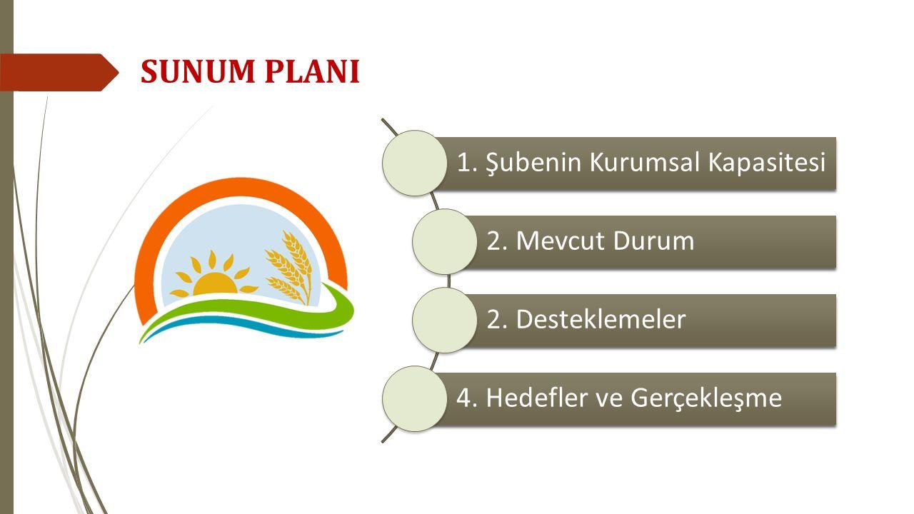 1. Şubenin Kurumsal Kapasitesi 2. Mevcut Durum 2. Desteklemeler 4. Hedefler ve Gerçekleşme SUNUM PLANI