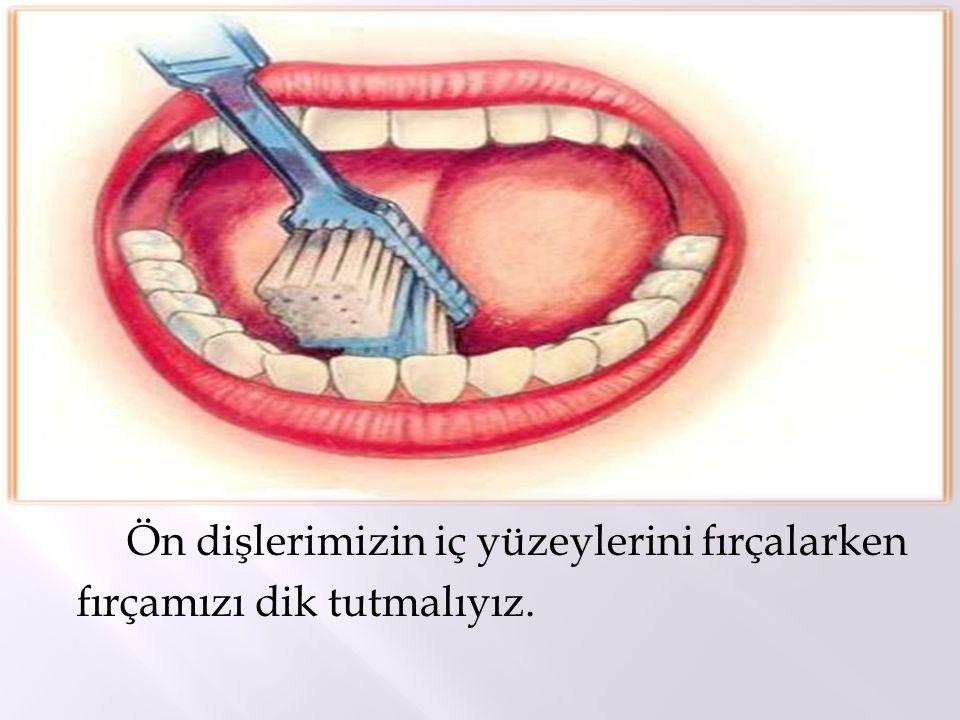 Ön dişlerimizin iç yüzeylerini fırçalarken fırçamızı dik tutmalıyız.