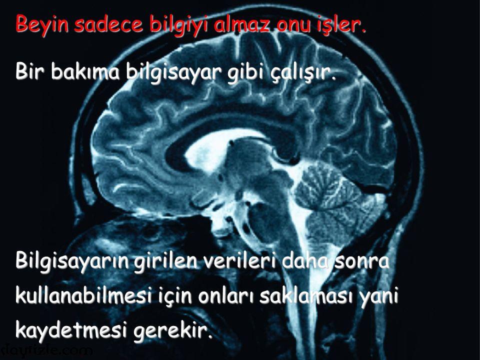 Beynimiz aşağıdaki soruları sorarak gelen bilgiyi sorgular.