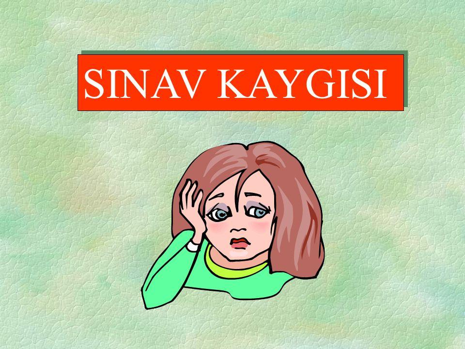 SINAV KAYGISI