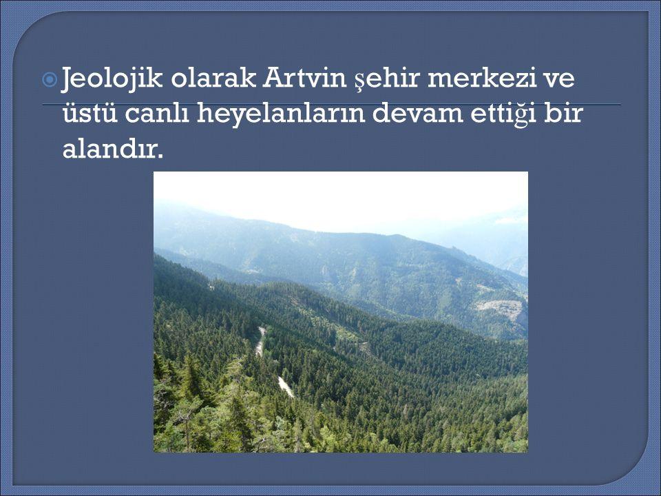  Jeolojik olarak Artvin ş ehir merkezi ve üstü canlı heyelanların devam etti ğ i bir alandır.
