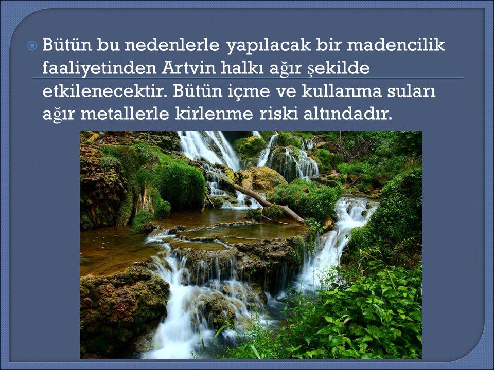  Bütün bu nedenlerle yapılacak bir madencilik faaliyetinden Artvin halkı a ğ ır ş ekilde etkilenecektir.