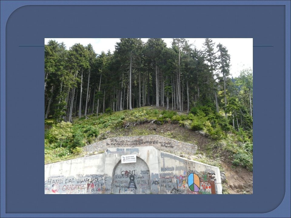  Cerattepa maden faaliyeti ile Bergama maden süreci aynı zamanlarda ba ş lamı ş tır.