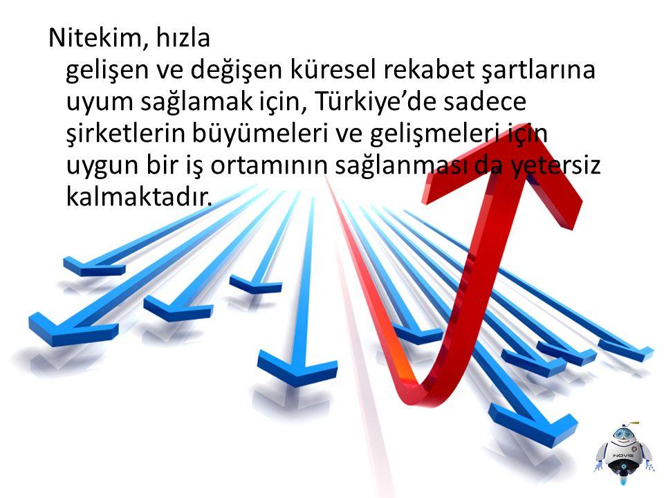 Nitekim, hızla gelişen ve değişen küresel rekabet şartlarına uyum sağlamak için, Türkiye'de sadece şirketlerin büyümeleri ve gelişmeleri için uygun bi