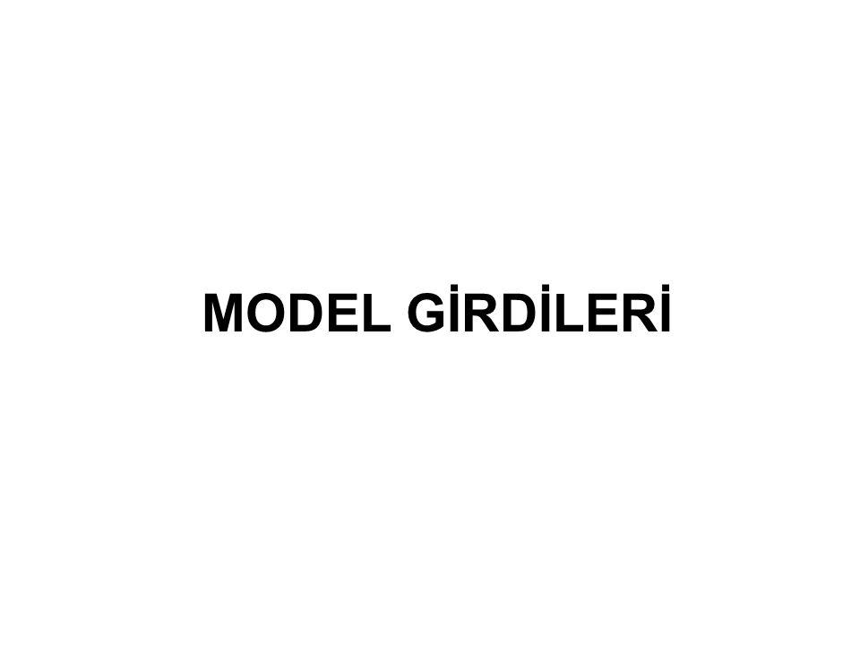 MODEL GİRDİLERİ