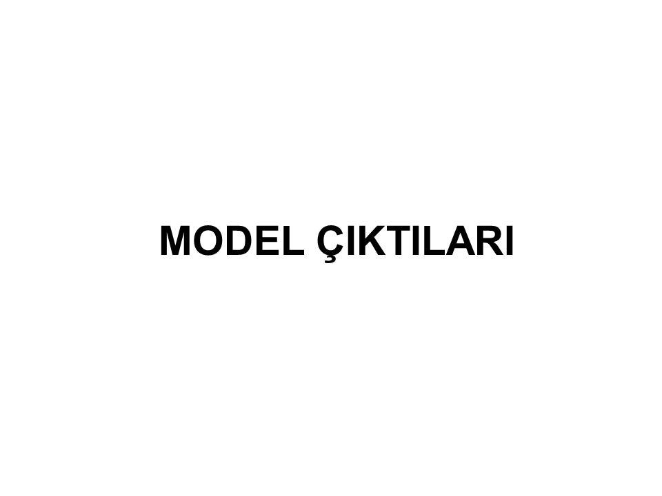 MODEL ÇIKTILARI