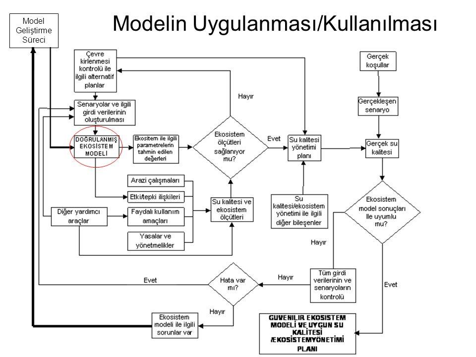 Modelin Uygulanması/Kullanılması Model Geliştirme Süreci