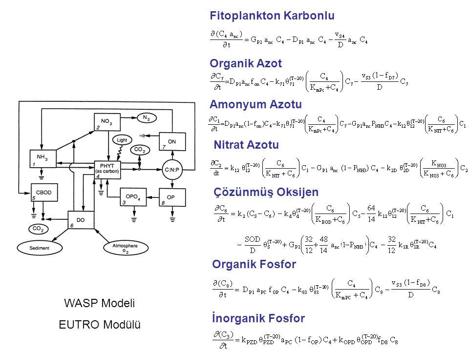 Organik Fosfor İnorganik Fosfor Çözünmüş Oksijen Nitrat Azotu Amonyum Azotu Organik Azot Fitoplankton Karbonlu WASP Modeli EUTRO Modülü