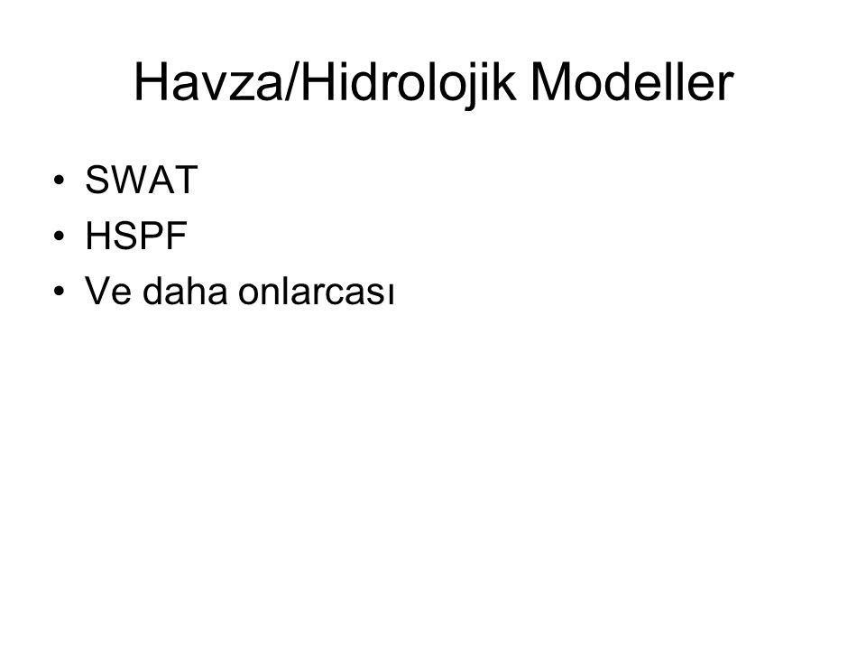 Havza/Hidrolojik Modeller SWAT HSPF Ve daha onlarcası
