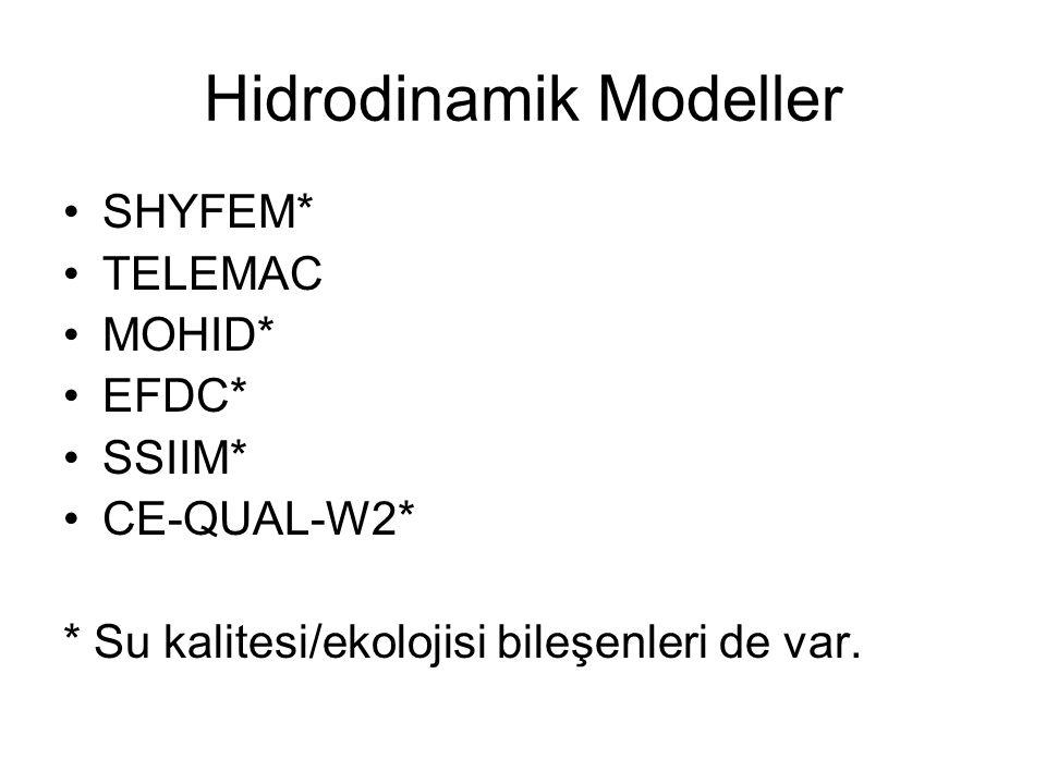 Hidrodinamik Modeller SHYFEM* TELEMAC MOHID* EFDC* SSIIM* CE-QUAL-W2* * Su kalitesi/ekolojisi bileşenleri de var.