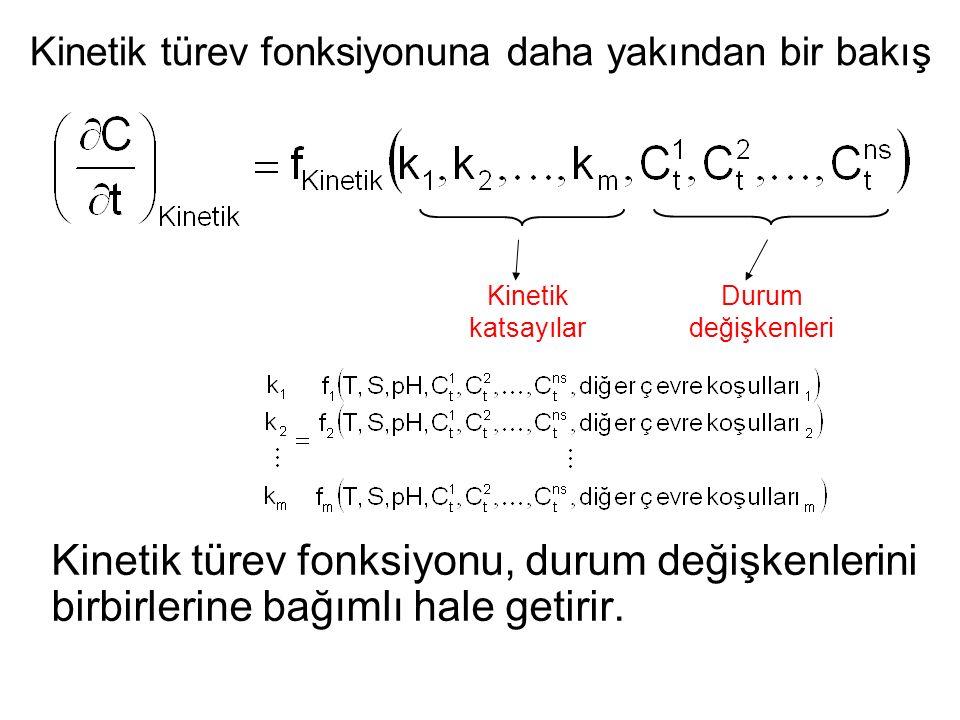 Kinetik türev fonksiyonu, durum değişkenlerini birbirlerine bağımlı hale getirir.