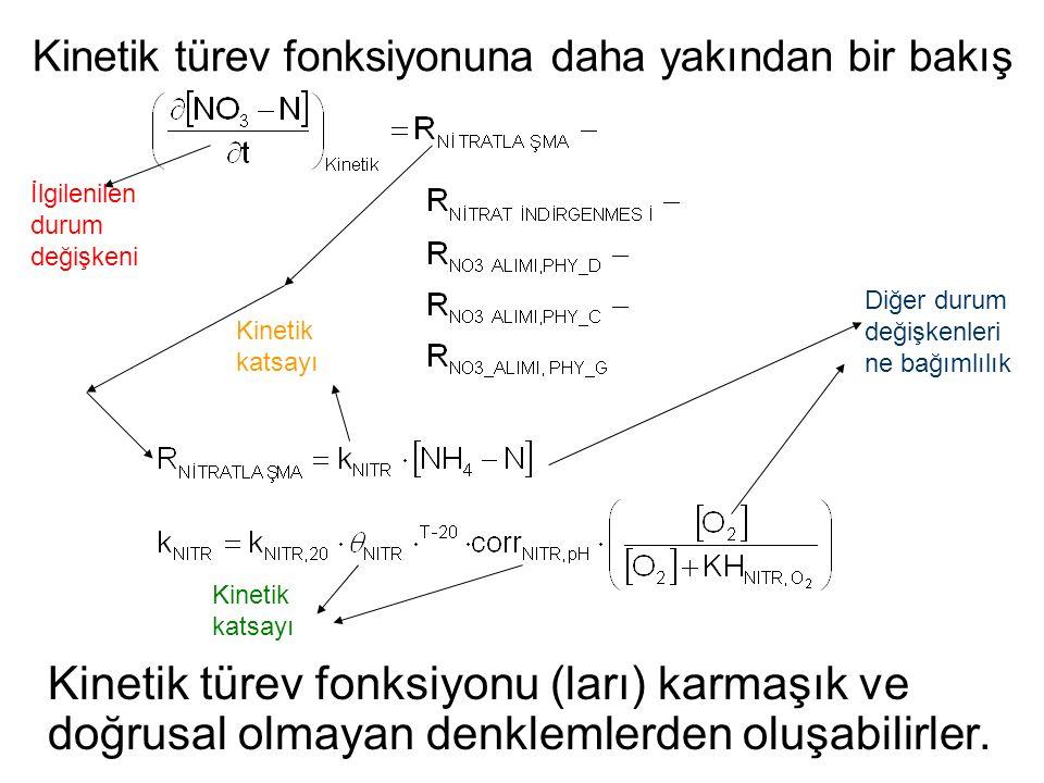 Kinetik türev fonksiyonu (ları) karmaşık ve doğrusal olmayan denklemlerden oluşabilirler. Diğer durum değişkenleri ne bağımlılık İlgilenilen durum değ