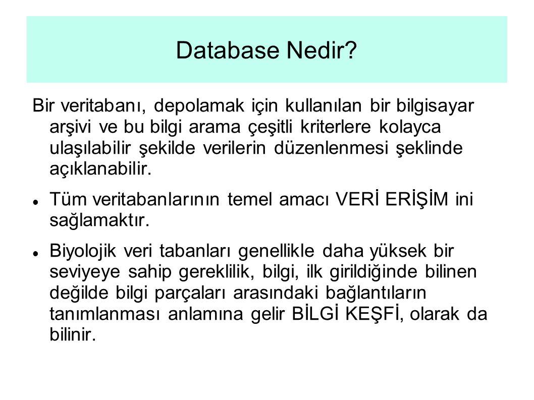 Database Nedir.