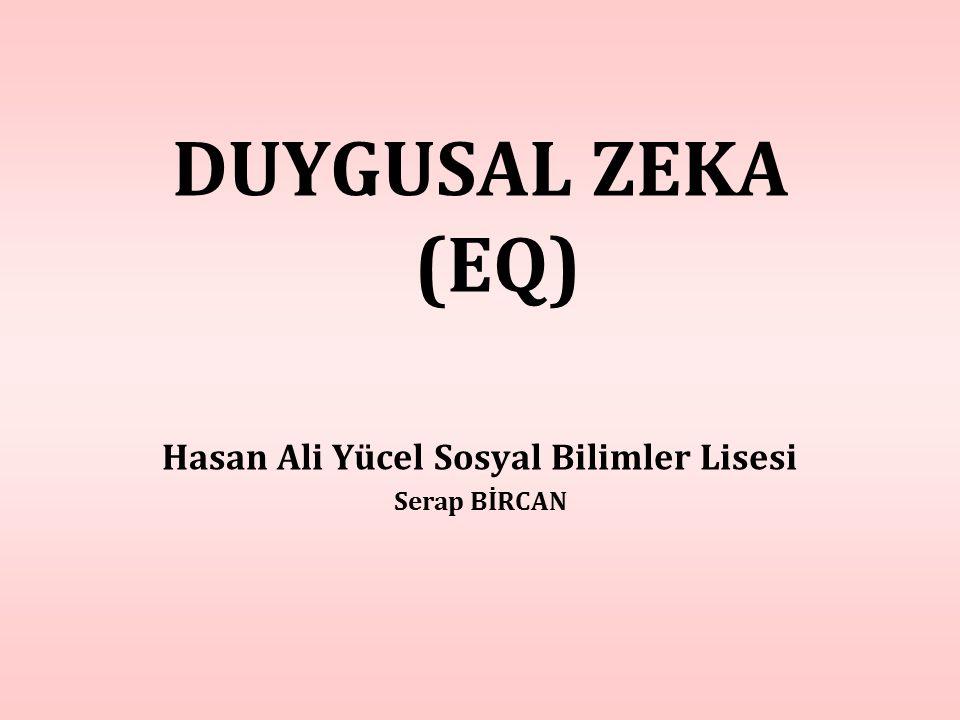DUYGUSAL ZEKA (EQ) Hasan Ali Yücel Sosyal Bilimler Lisesi Serap BİRCAN