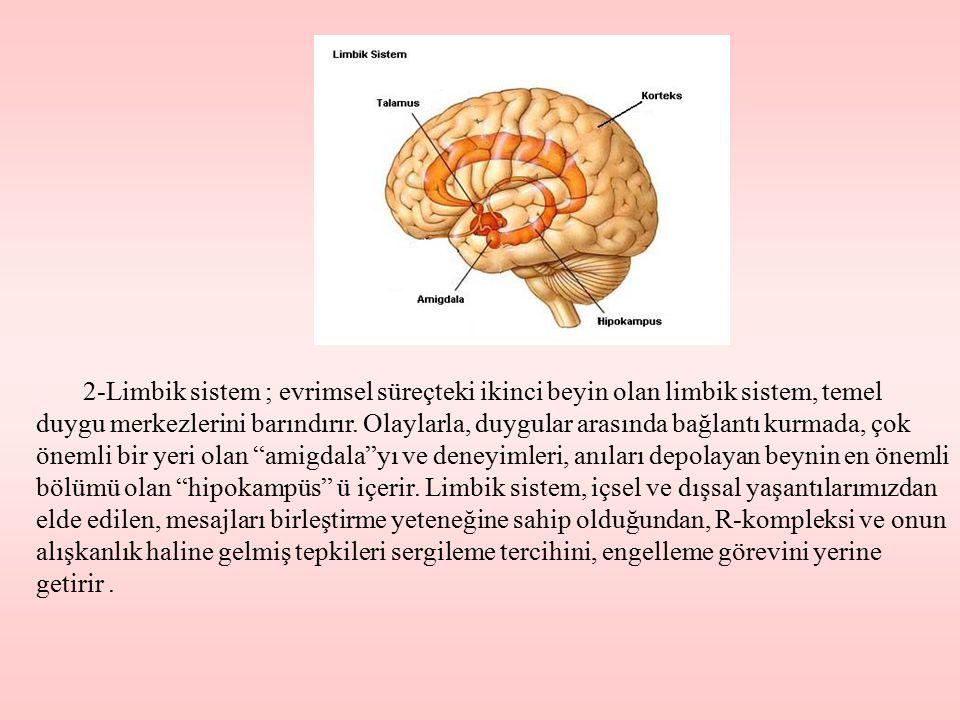 2-Limbik sistem ; evrimsel süreçteki ikinci beyin olan limbik sistem, temel duygu merkezlerini barındırır. Olaylarla, duygular arasında bağlantı kurma