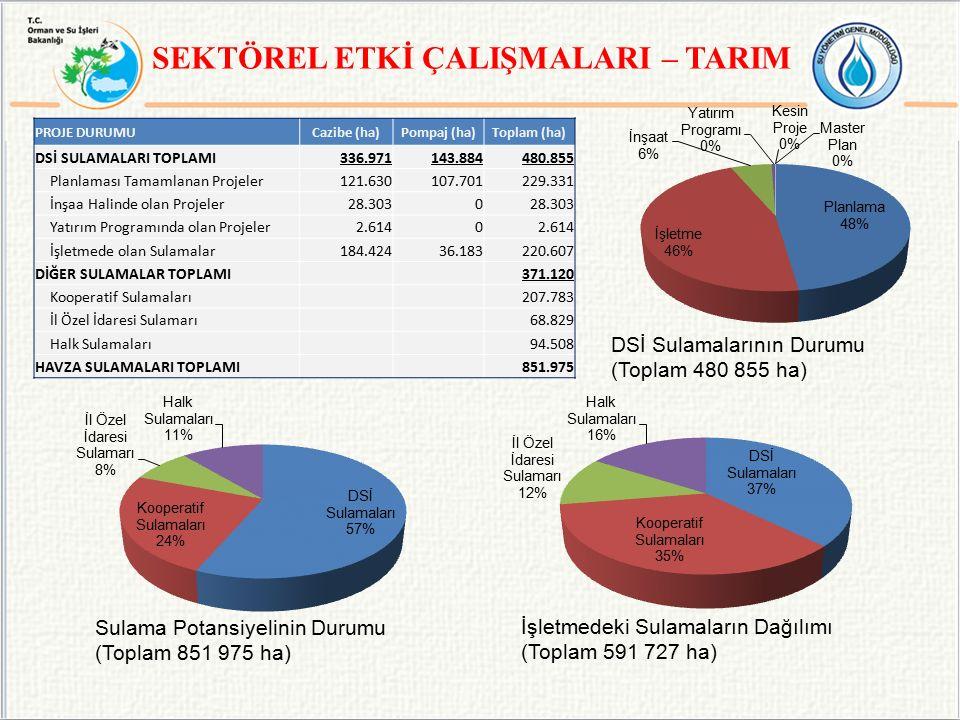 SEKTÖREL ETKİ ÇALIŞMALARI – TARIM PROJE DURUMUCazibe (ha)Pompaj (ha)Toplam (ha) DSİ SULAMALARI TOPLAMI336.971143.884480.855 Planlaması Tamamlanan Proj