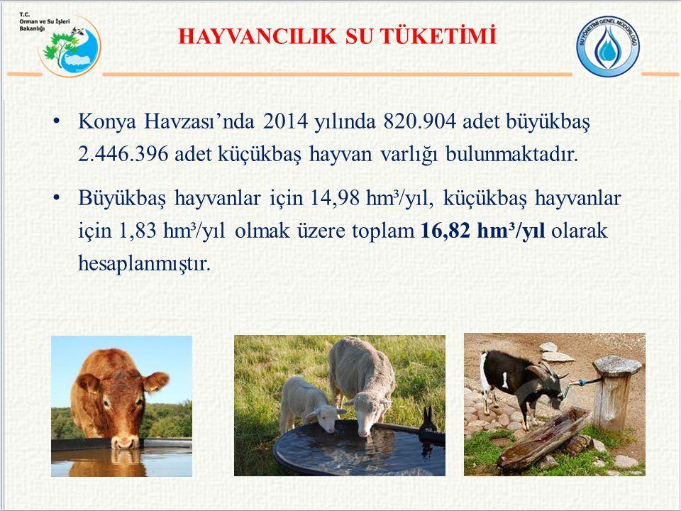 HAYVANCILIK SU TÜKETİMİ Konya Havzası'nda 2014 yılında 820.904 adet büyükbaş 2.446.396 adet küçükbaş hayvan varlığı bulunmaktadır.