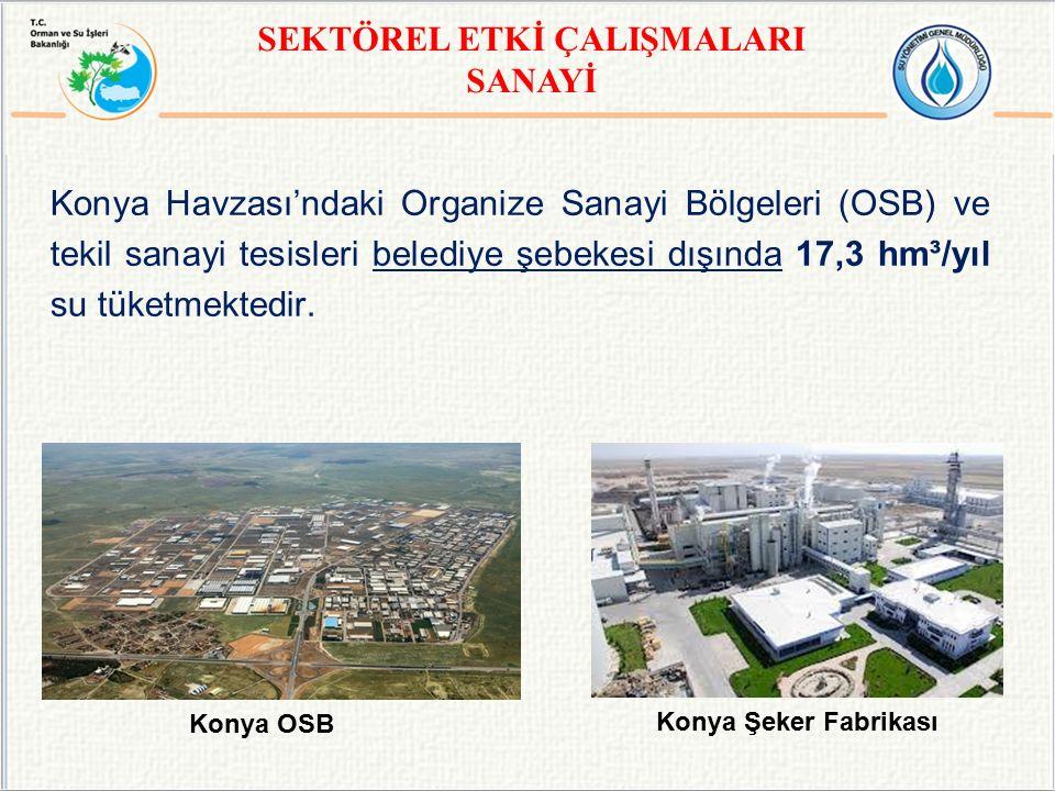 Konya Havzası'ndaki Organize Sanayi Bölgeleri (OSB) ve tekil sanayi tesisleri belediye şebekesi dışında 17,3 hm³/yıl su tüketmektedir. Konya OSB Konya