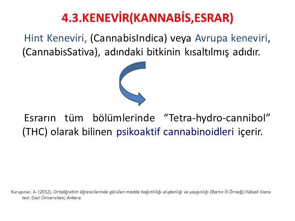 4.3.KENEVİR(KANNABİS,ESRAR) Hint Keneviri, (CannabisIndica) veya Avrupa keneviri, (CannabisSativa), adındaki bitkinin kısaltılmış adıdır. Esrarın tüm
